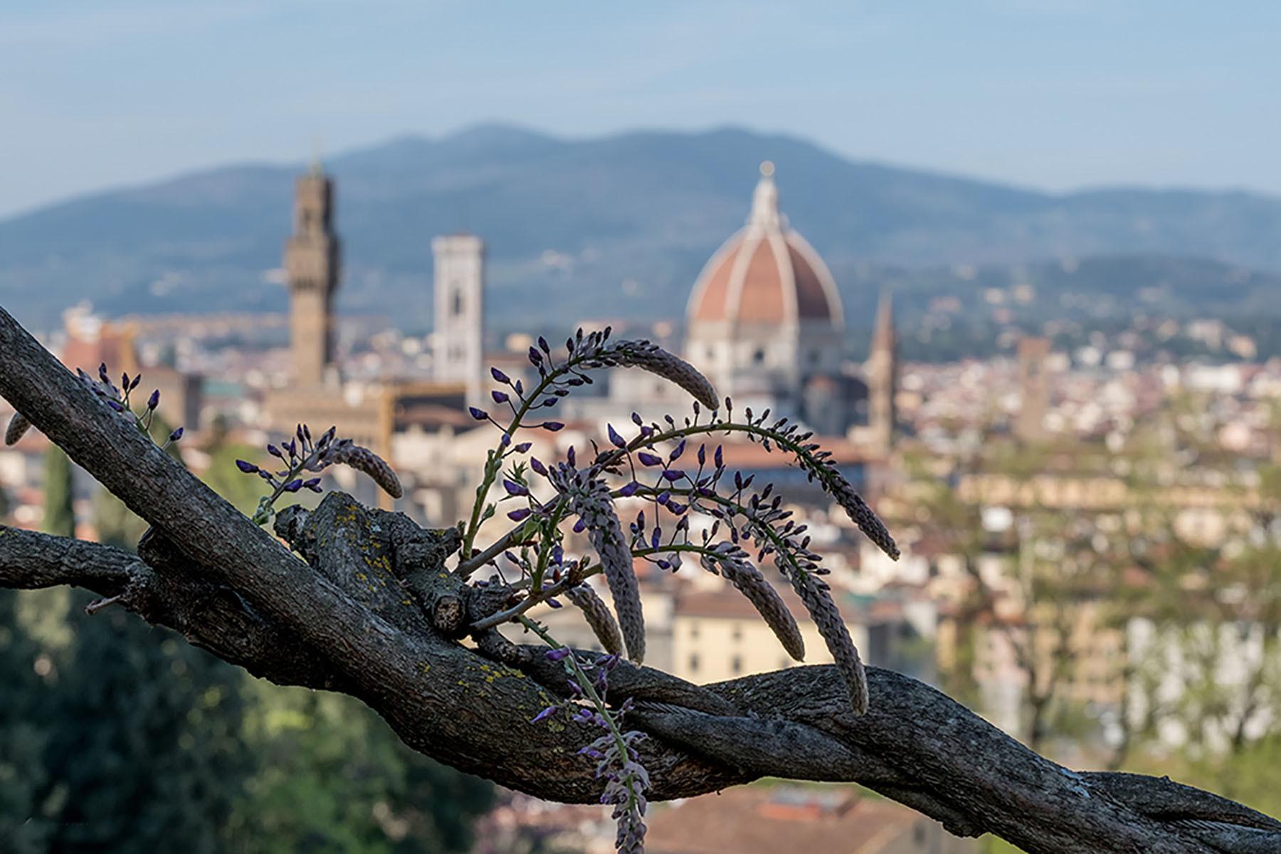 Toskański wiosenny widok na na Duomo i Campagnile we Florencji.