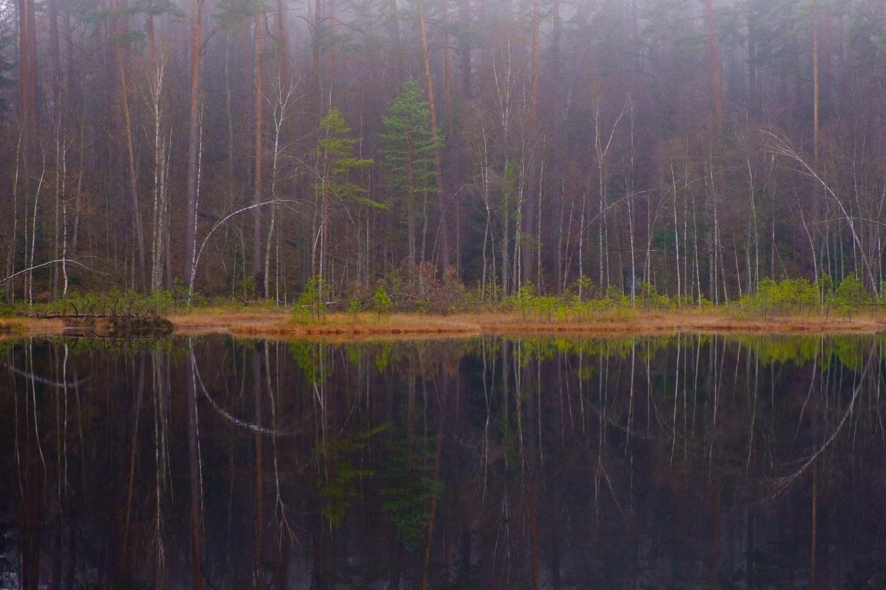 Kolory jesiennego lasu nad mazurkim jeziorem