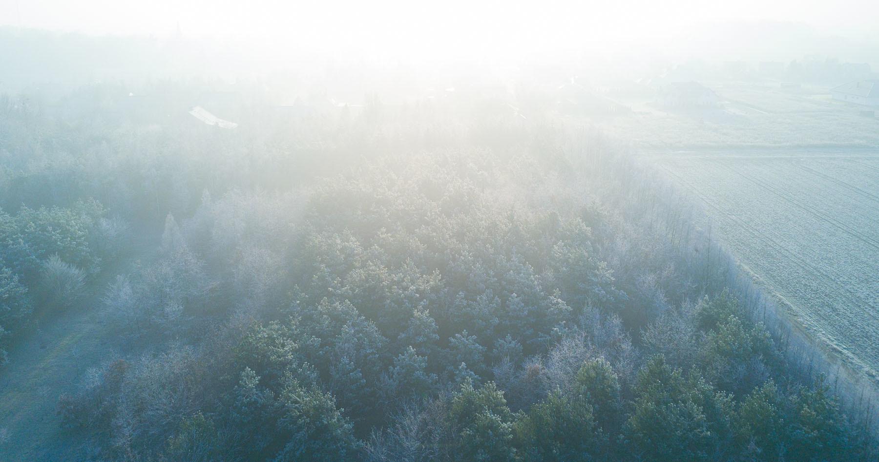 Zimowy słoneczny poranek w okolicach Wrocławia.
